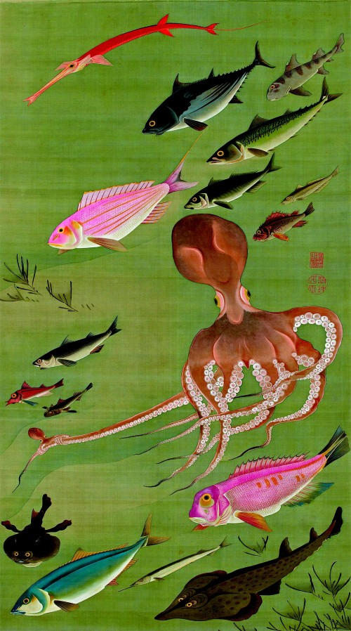 8. Fish and octopus.jpg
